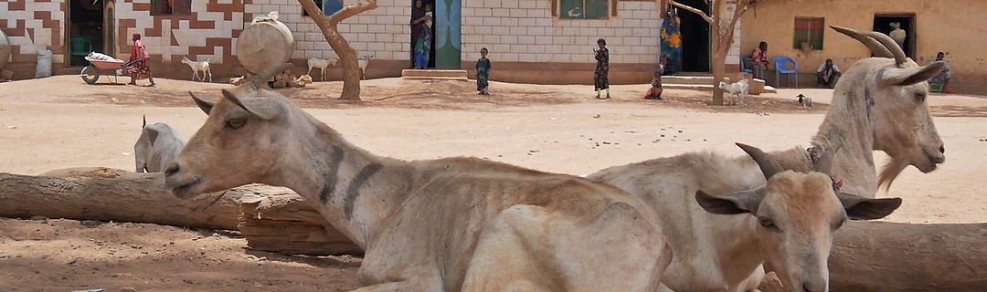 Somalia Somaliland Dürre Hungersnot CARE international