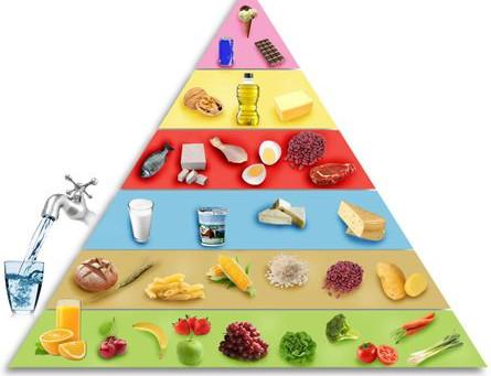 Séquence - Les comportements alimentaires favorables à la santé