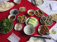 7 course snake meal in Vietnam