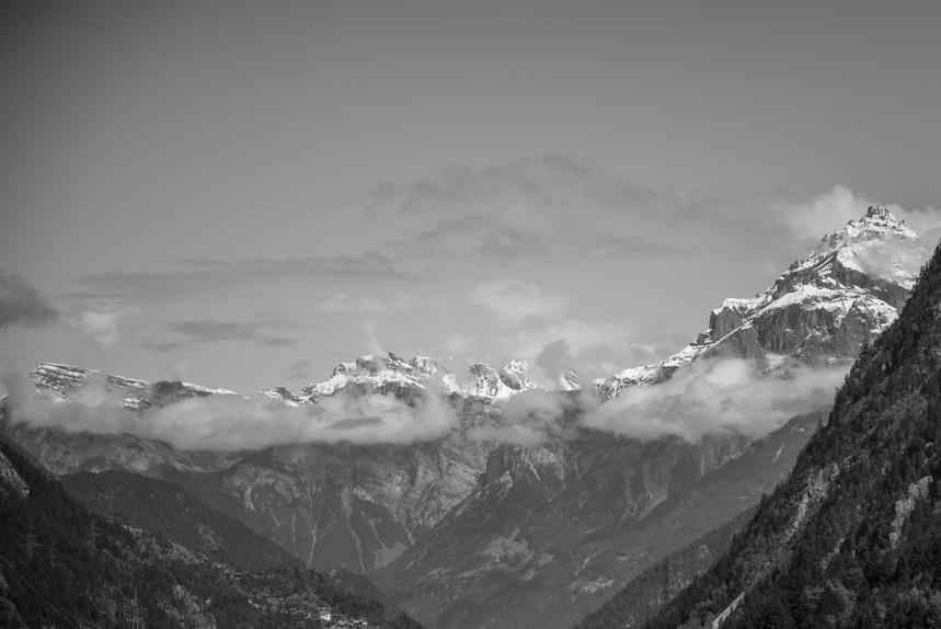 alps-nature-flora-sky-584368.jpg