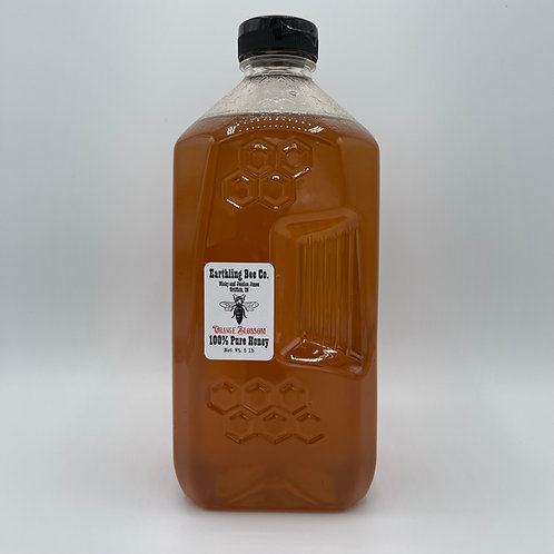 Orange Blossom Honey 5lb Jug