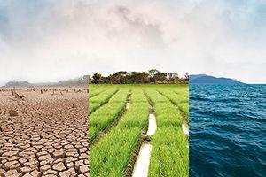 Climate Change iStock-1001629060 300x200