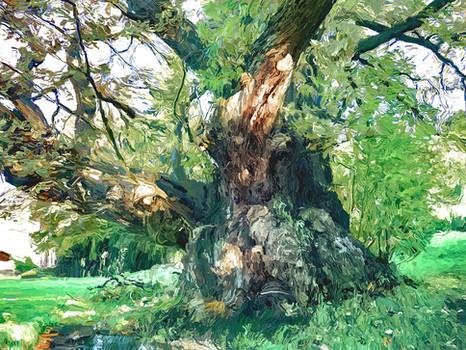 Welsh Oak Tree. 2020.
