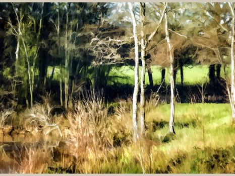 Horsted Keynes' Lake scene, Sussex. 2020.