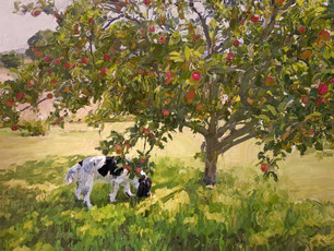 Apple tree and curious dog