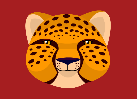 Cheetah Kit