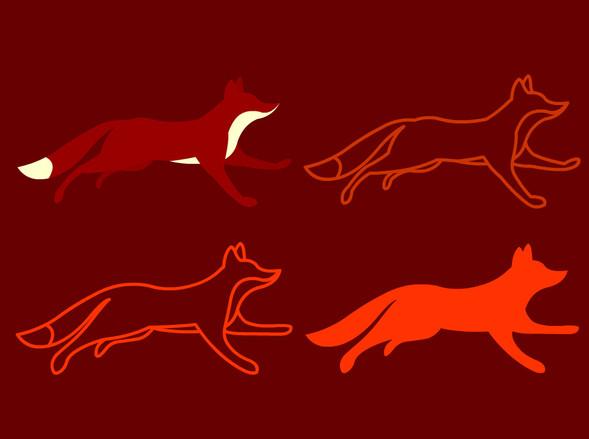 fox_bod_08.jpg