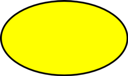 yellow oval.png