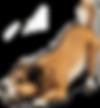 150368784313-dog-png-image.png