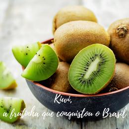 Kiwi, a frutinha que conquistou o Brasil