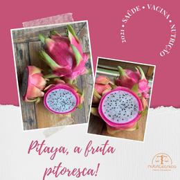 Pitaya, a fruta pitoresca!