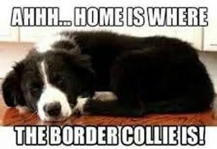 Home is Where....jpg