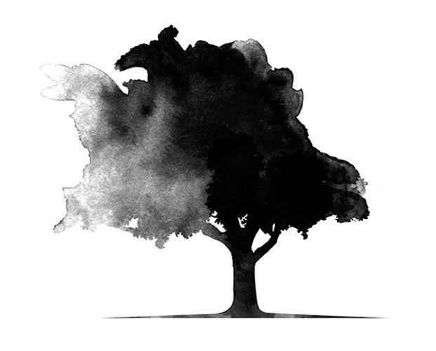 Baum_klein.jpg