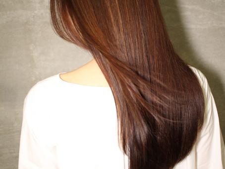 髪の毛の基本②