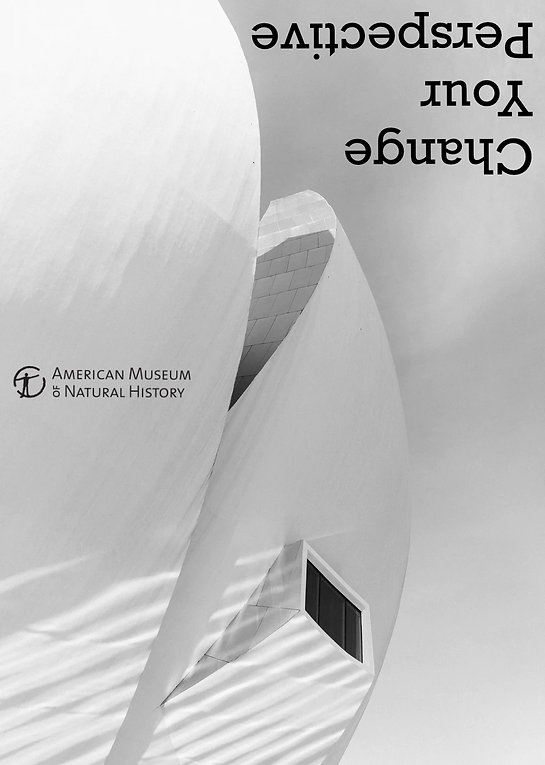 museum perspective.jpg