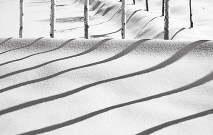 kiarostami2.jpg