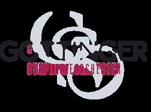 GSO Logo 2020 _ V1.png