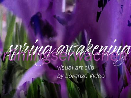 SPRING AWAKENING - ANMERKUNGEN ZUM KUNSTFILM