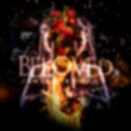 Beloved Cover.jpg
