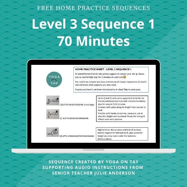 Level 3 Sequence 1