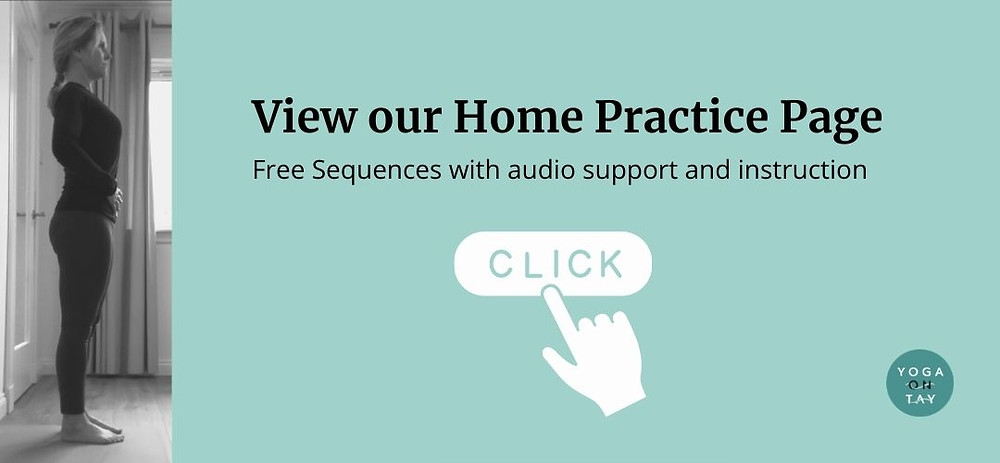 Visit our Yoga Home Practice Page for free home practice sequences