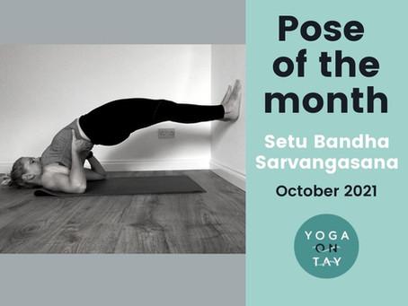 Setu Bandha Sarvangasana Pose of the Month