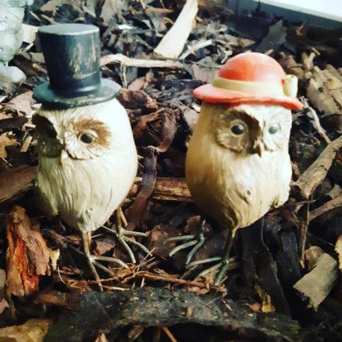 Mr & Mrs Owl