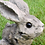 Thumbnail: Small Wood Effect Rabbit