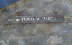 IMG_4883.JPG