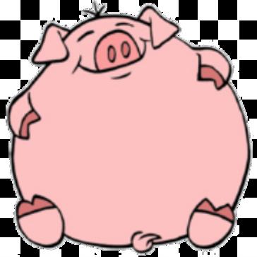 Big Pig Sponsorship