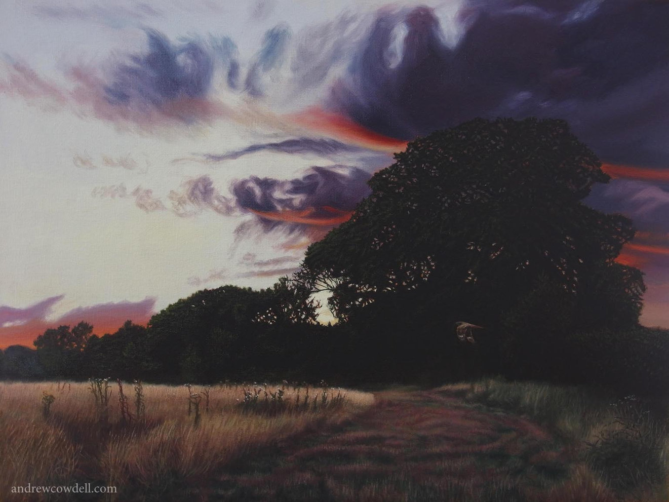 Dark Paintings by Andrew Cowdell. Landscape after sunset with nightjar bird at Hermitage, West Berkshire.