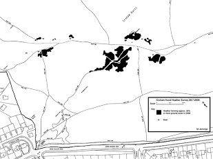Croham Hurst Heather 2008map1