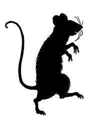 rat sil large