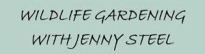 Jenny Steele