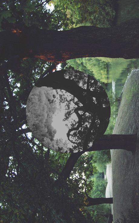 _MG_8048 abstract