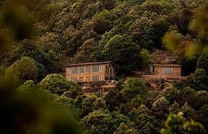 Oak Chalet and its surrounding jungle seen from the Gahana valley it overlooks.