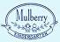 mul web -the logo