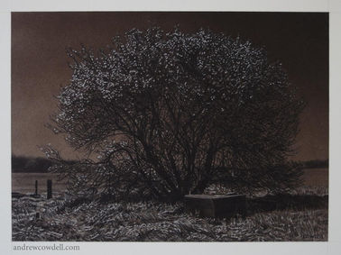 Dark painting by Andrew Cowdell showing tree in the light of a full moon.