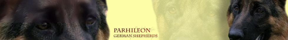 parhileon6n
