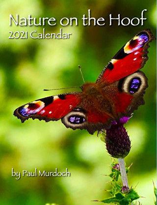 NOTH Calendar Marketing Image