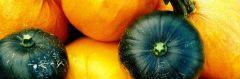 pumpkin240
