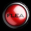 Fleas Eliminator Pest Control Swansea