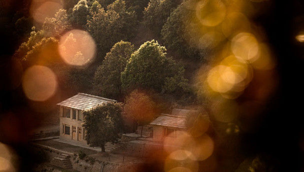 Oak Chalet is a tranquil guesthouse in the middle of a dense Himalayan Oak Forest