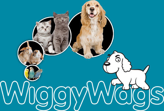 Welcome to WiggyWays