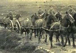 royal field artillery driver bombadier