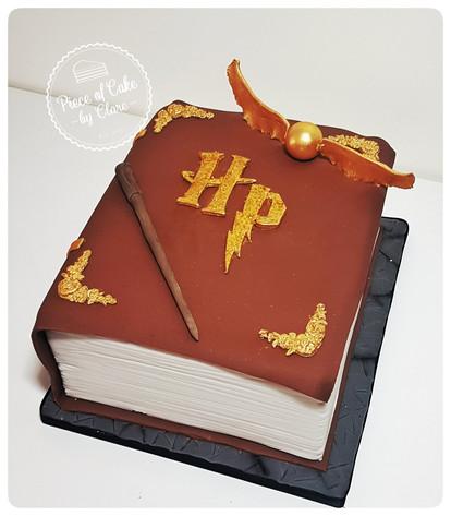 Harry Potter spell book cake
