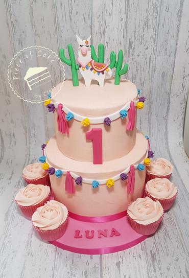 1st birthday cake.  Llama cake with matching vanilla cupcakes