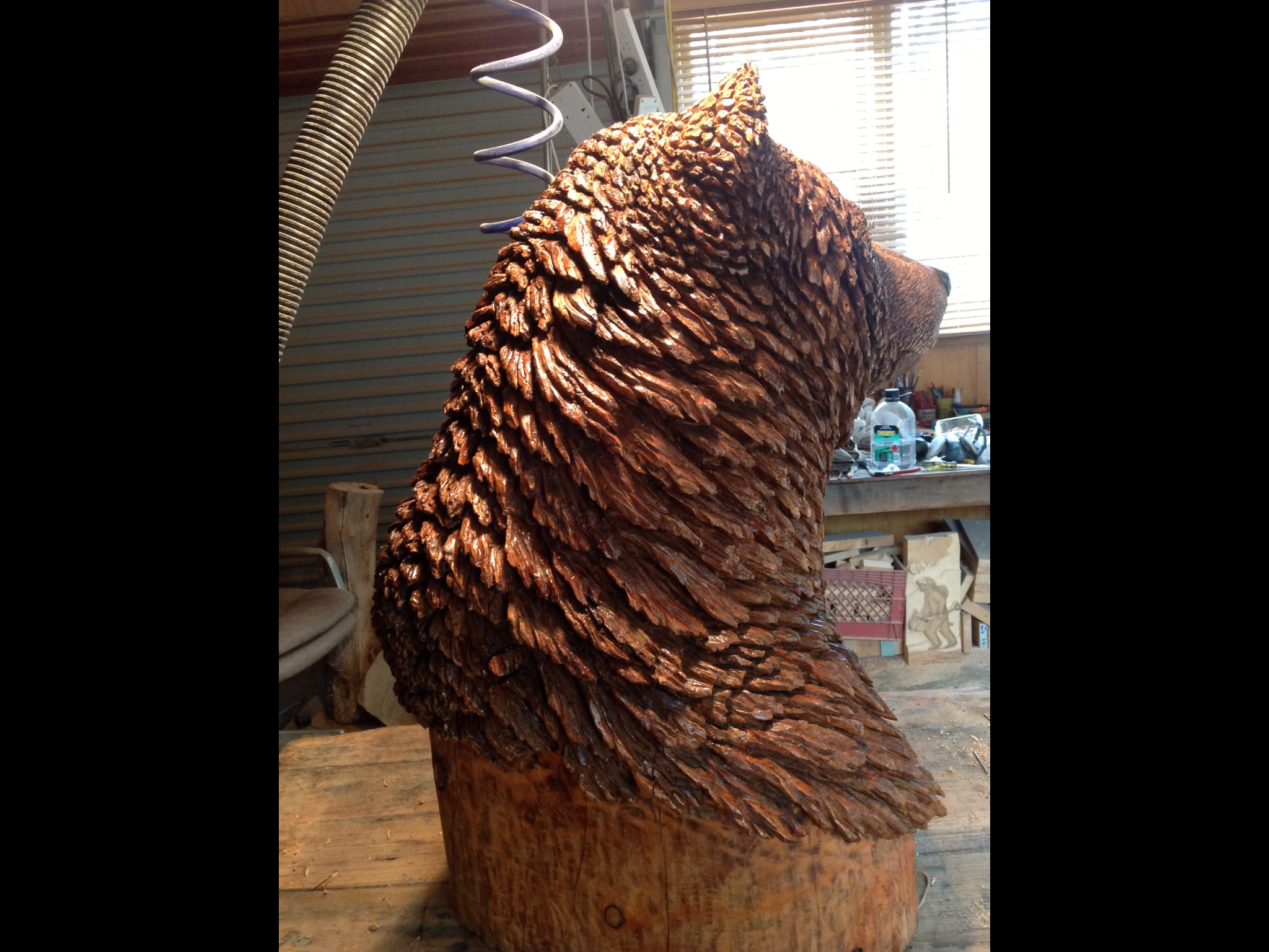 BIG GRIZZLY SIDE VIEW