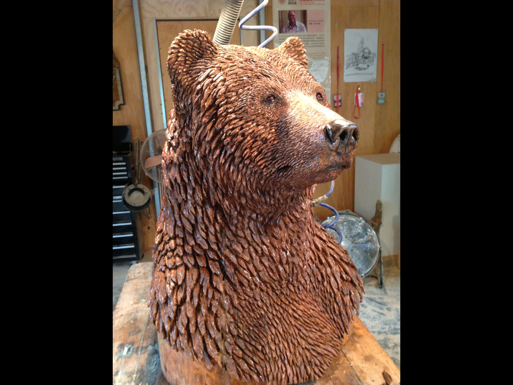 BIG GRIZZLY BUST