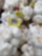 Garlic - Pure White Revised.jpg